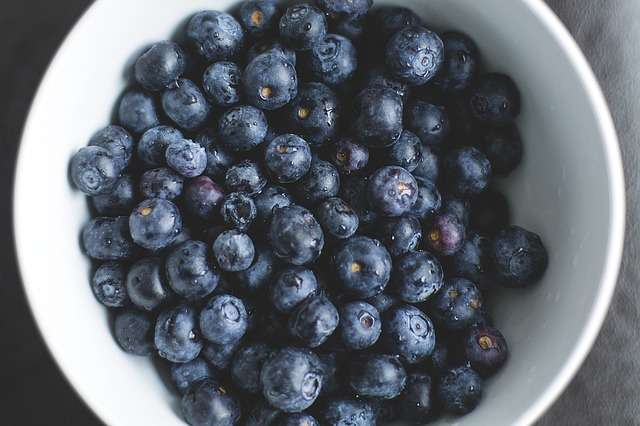 blueberries-1149861_640.jpg