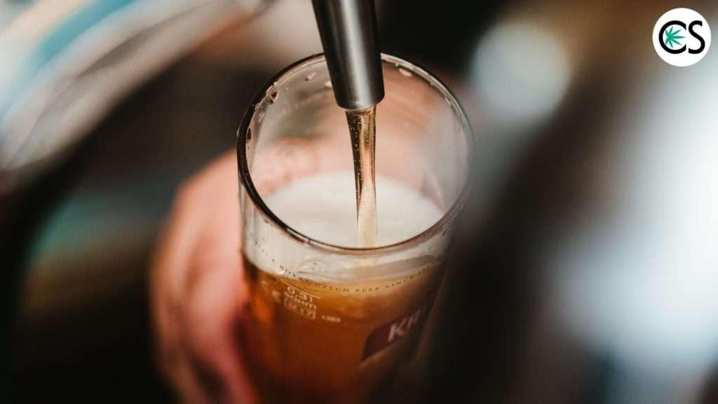 cbd-beer-cbd-school