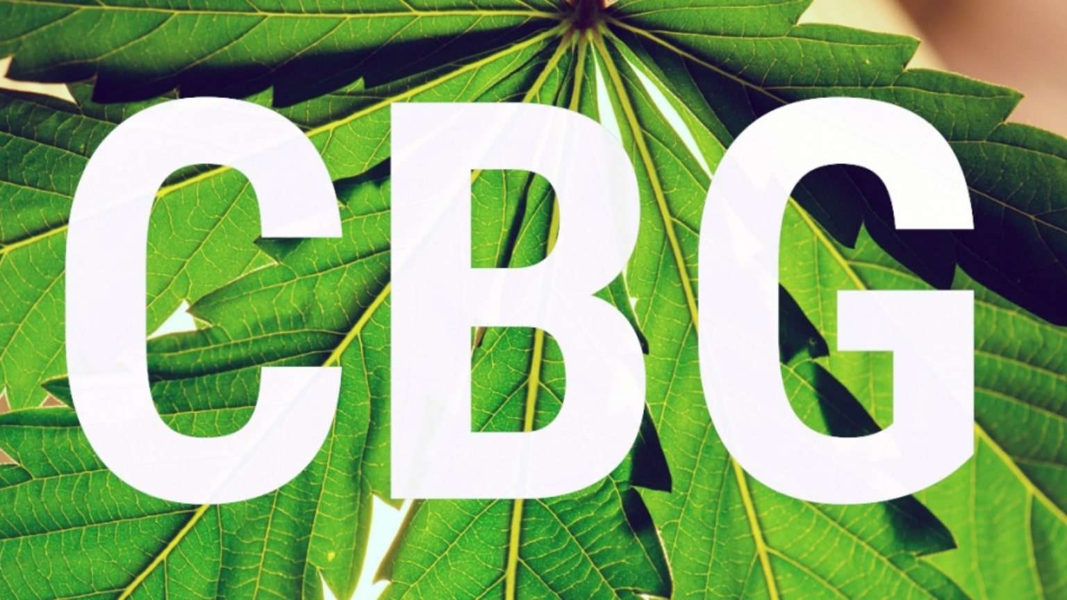 what-is-cbg