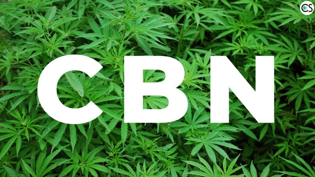 cbn-cannabinol