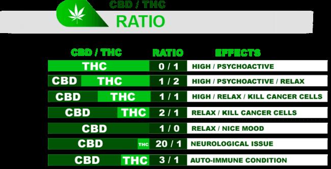 THC to CBD Ratio
