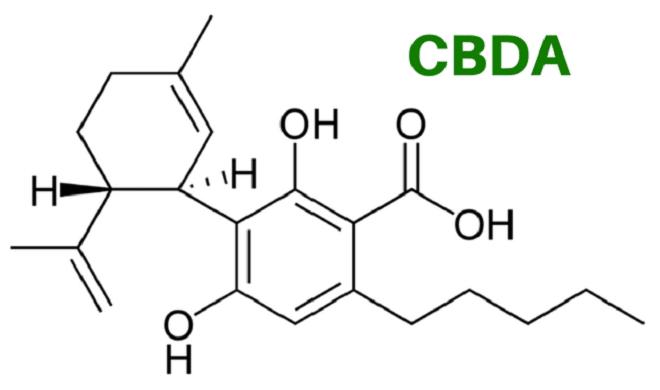 CBDA Molecule