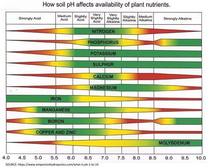Soil Acidity and Minerals