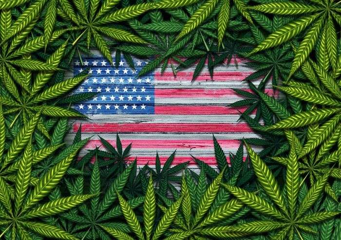 Cannabis US Legality