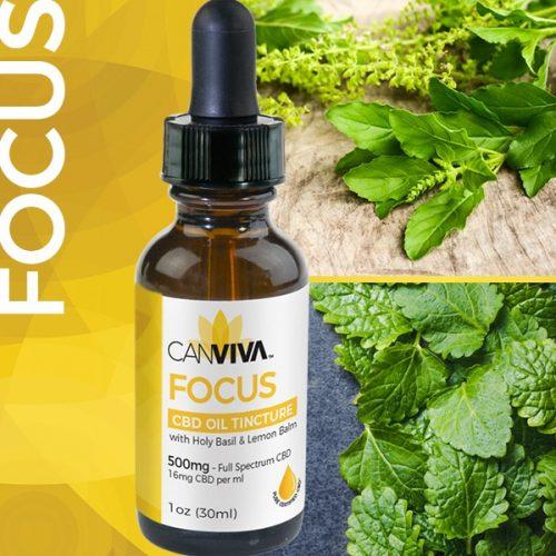 Canviva Focus