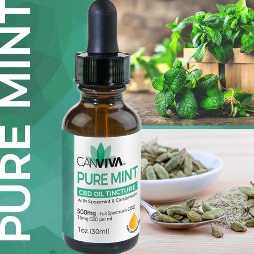 Canviva Pure Mint